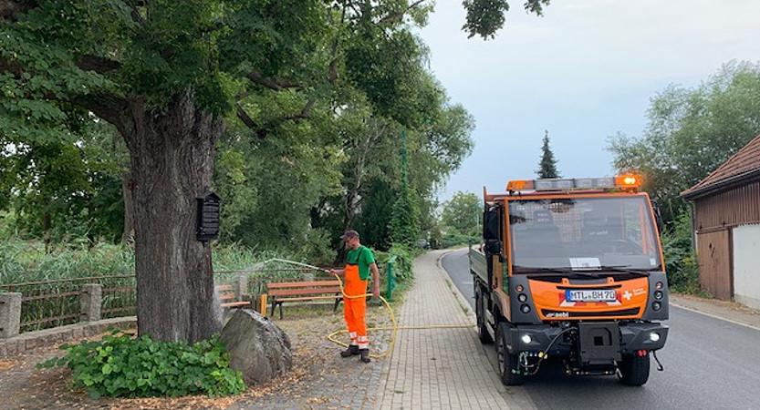 Der Bauhof Borsdorf berichtet über die Bewässerung von Bäumen, Pflanzen und Grünflächen im Ort