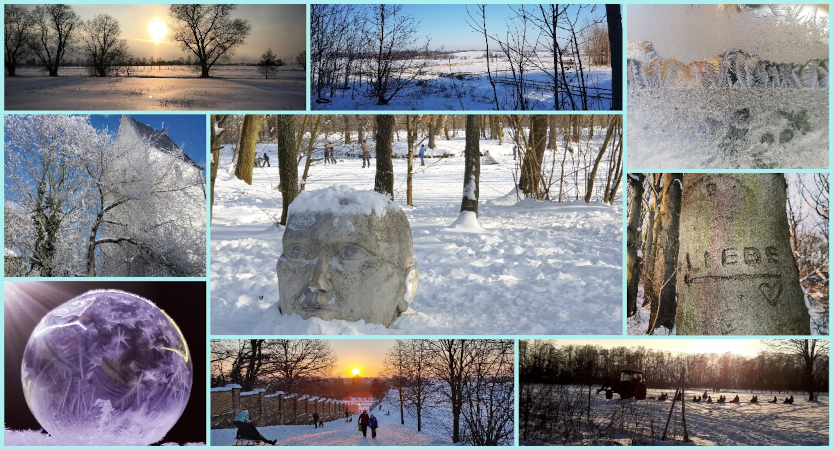 """Fotowettbewerb """"Winter in Borsdorf"""": Galerie aller eingesandten Fotos und Gewinner"""