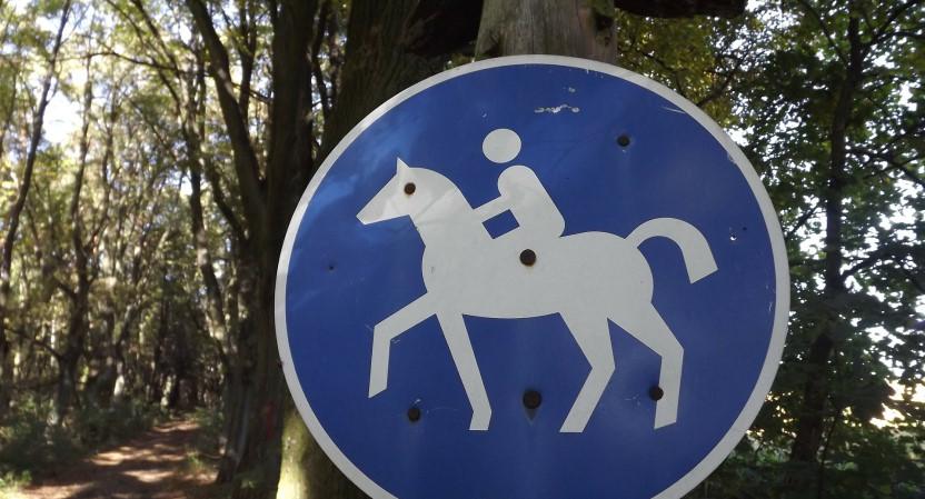 Allgemeinverfügung zur Ausweisung von Reitwegen auf dem Gebiet der Gemeinde Borsdorf